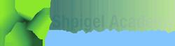 Shpigel academy
